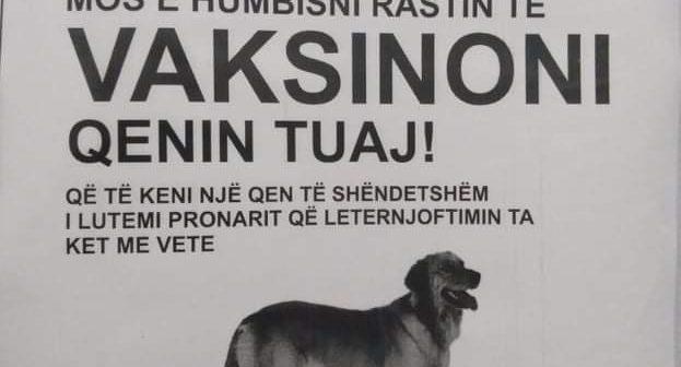 Vaksinoni qentë pa pagesë!